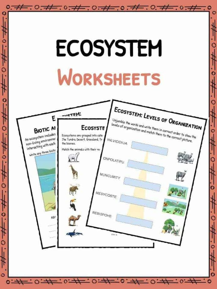 Ecosystem Worksheets 4th Grade Ecosystem Worksheets Biotic Abiotic Lesson Resources Free