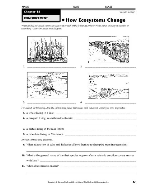 Ecosystem Worksheets 4th Grade How Ecosystems Change Worksheet for 4th 8th Grade
