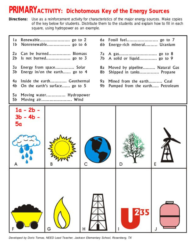 Energy Worksheets for 4th Grade Primary Activity Dichotomous Key Of Energy sources