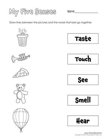 Five Senses Worksheets for Kindergarten Five Senses Matching