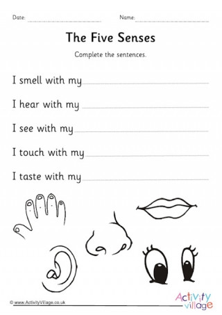 Five Senses Worksheets for Kindergarten Five Senses Worksheets