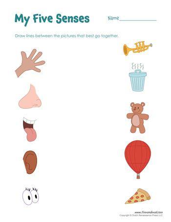 Five Senses Worksheets for Kindergarten Free Five Senses Worksheets for Kids