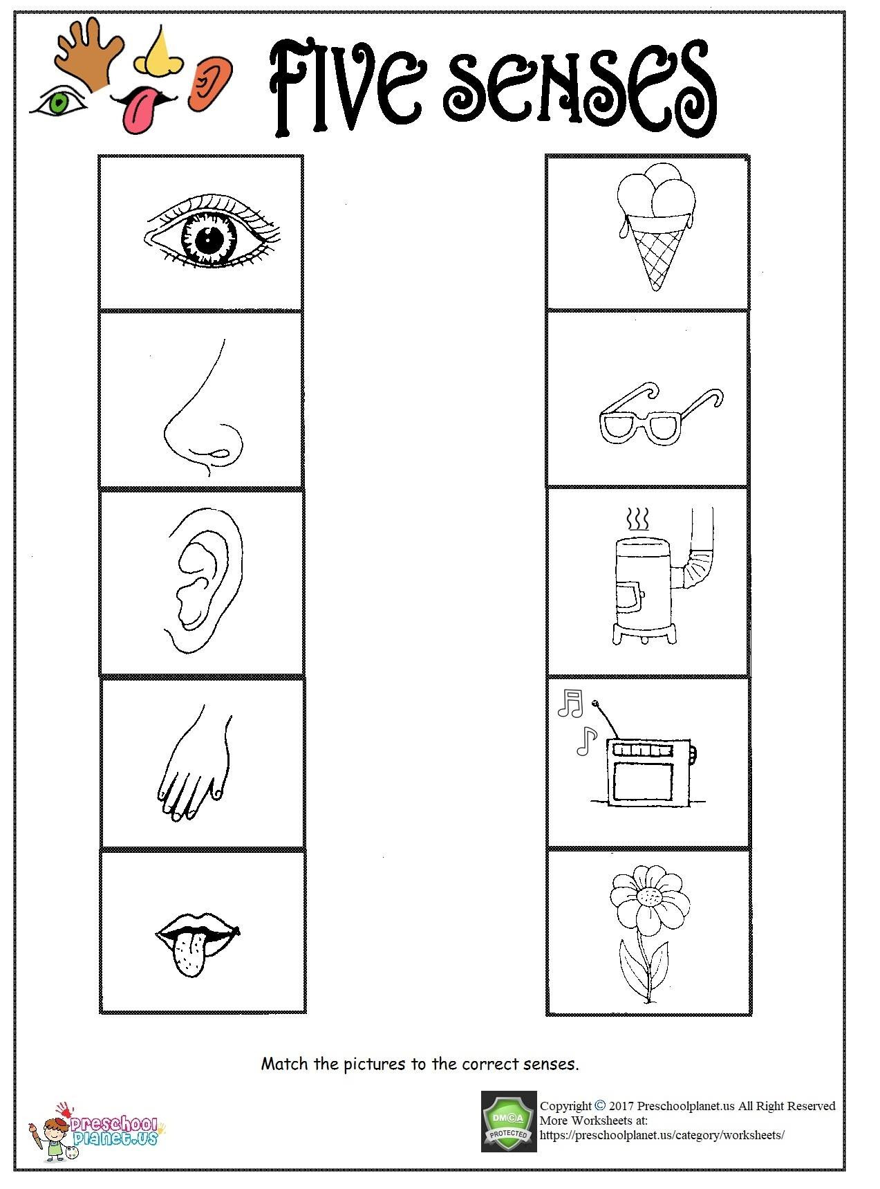 Five Senses Worksheets for Kindergarten sounds Kindergarten Worksheet for Sense