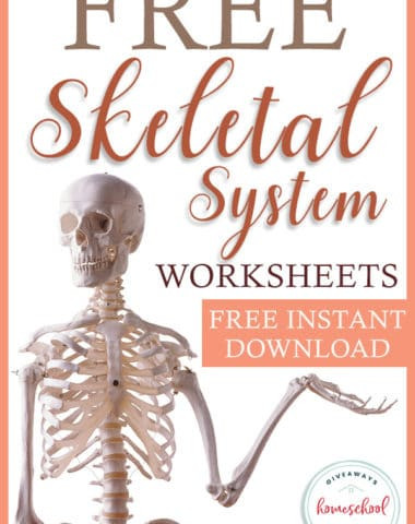 Free Printable Anatomy Worksheets Free Human Body Systems Worksheets Archives