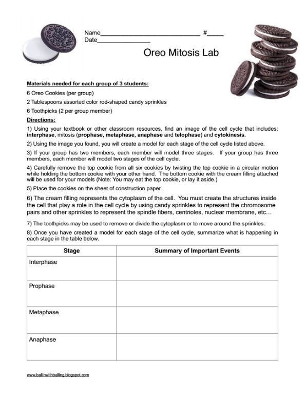 Free Printable Biology Worksheets Free Printable Worksheets On Microorganisms Google Search