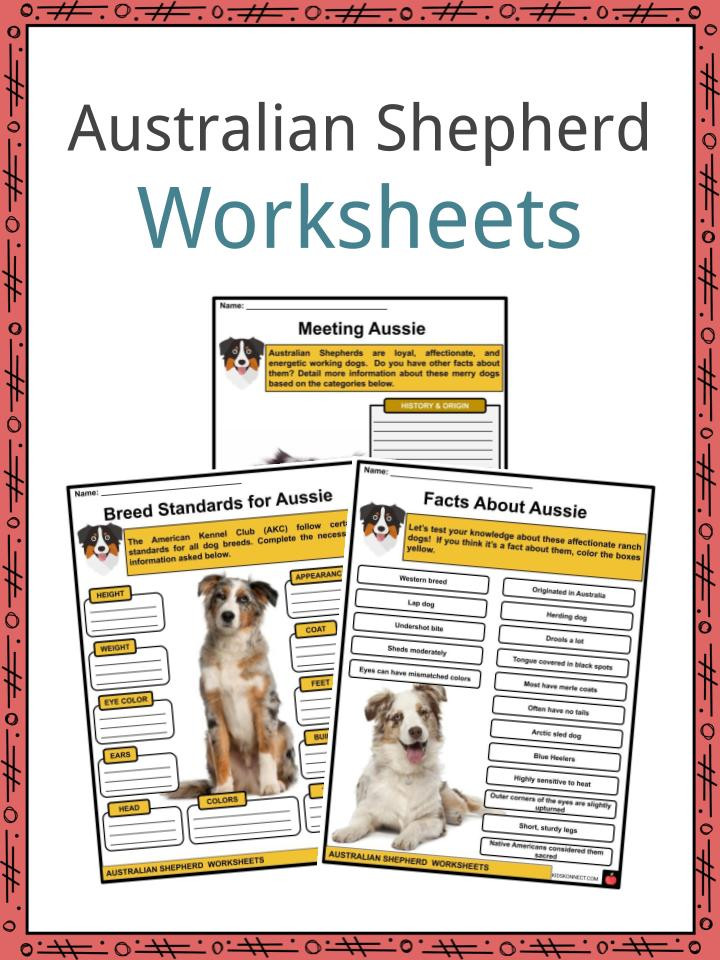 Free Printable Dog Training Worksheets Australian Shepherd Facts Worksheets & History for Kids