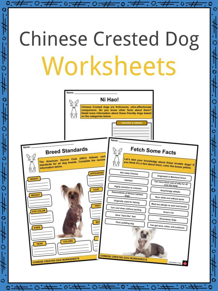 Free Printable Dog Training Worksheets Chinese Crested Dog Facts Worksheets & History for Kids