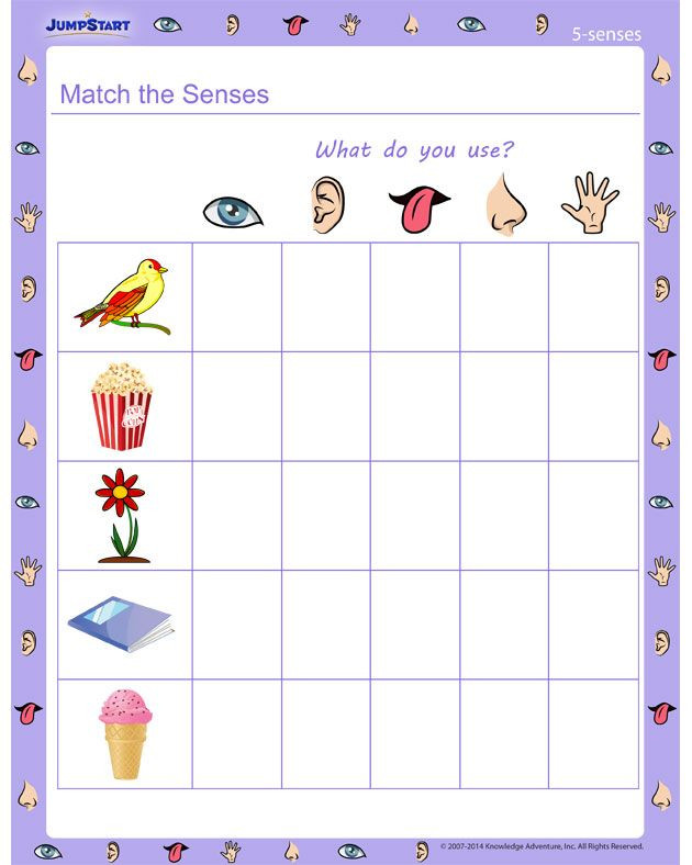Free Printable Five Senses Worksheets Match the Senses 5 Senses Worksheet