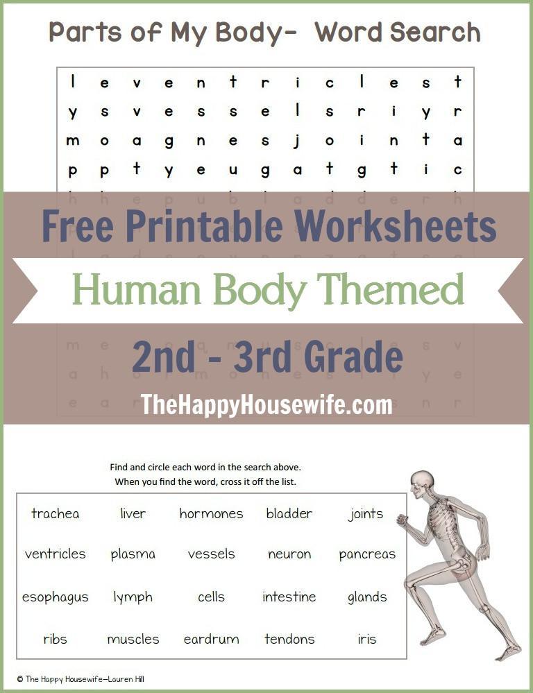 Free Printable Human Anatomy Worksheets Human Body themed Worksheets Free Printables the Happy