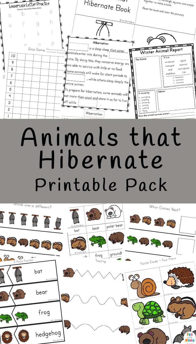 Hibernation Worksheet for Preschool Animals that Hibernate Printable Pack Fun with Mama