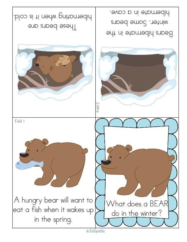 Hibernation Worksheet for Preschool Hibernating Bear Foldable Booklet