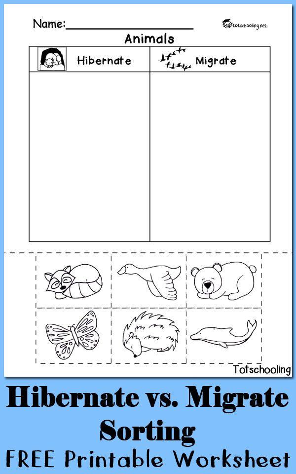 Hibernation Worksheet for Preschool Hibernation Vs Migration Animal sorting Worksheet