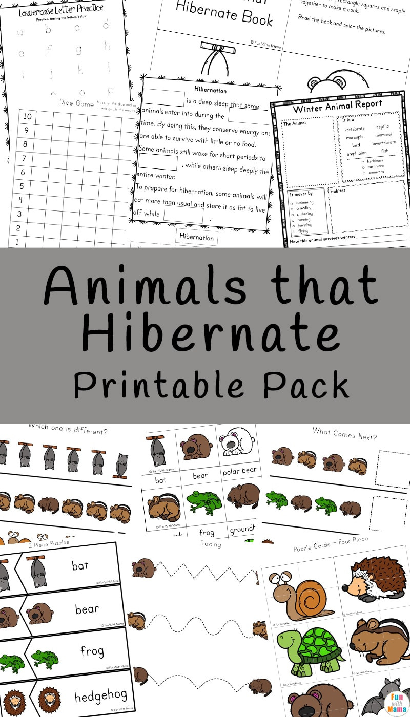 Hibernation Worksheets for Kindergarten Animals that Hibernate Printable Pack Fun with Mama