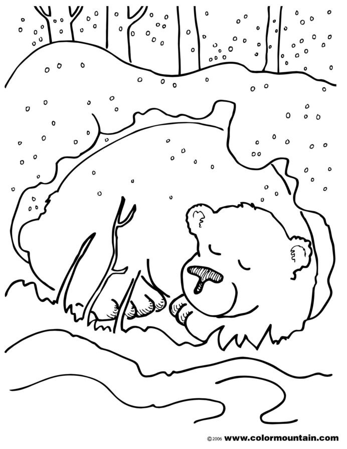 Hibernation Worksheets for Kindergarten Hibernating Bear Color Sheet Coloring with Animal