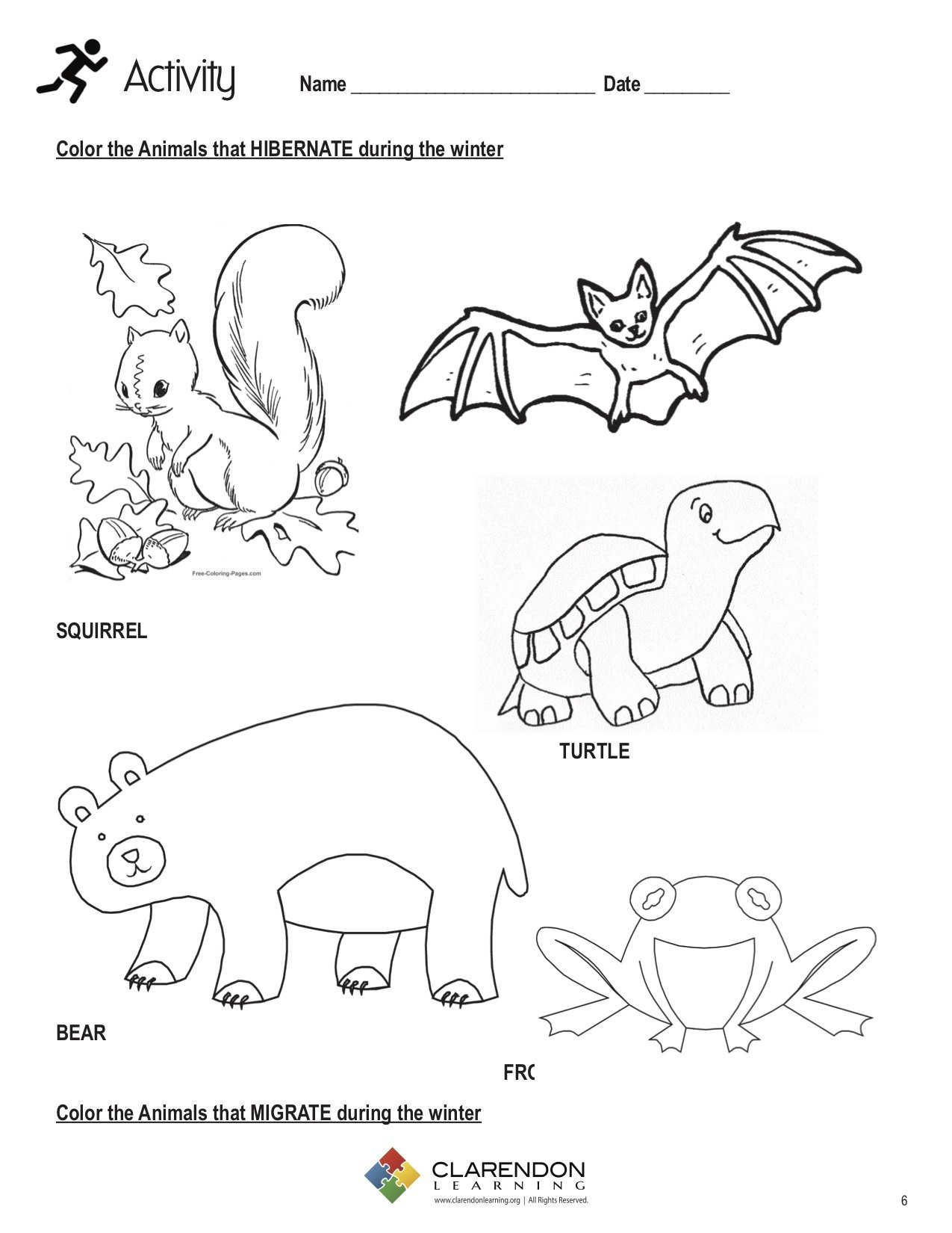 Hibernation Worksheets for Kindergarten Hibernation and Migration