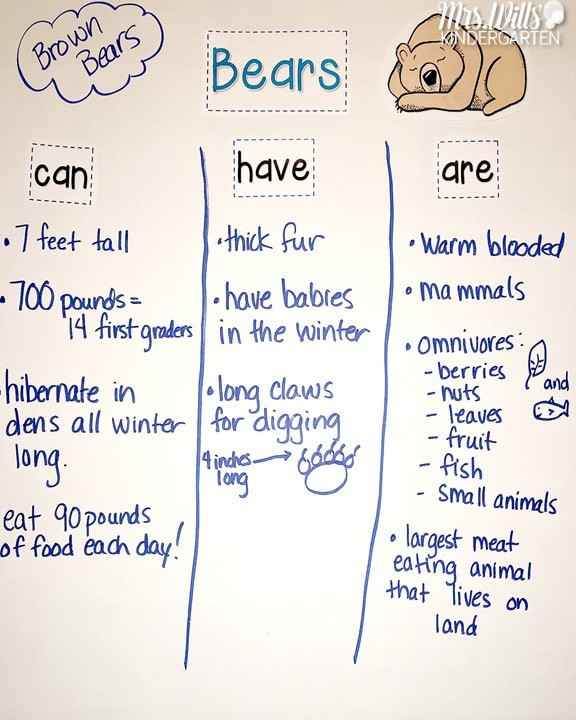 Hibernation Worksheets for Preschool Hibernating Animals Lesson Plans for Kindergarten