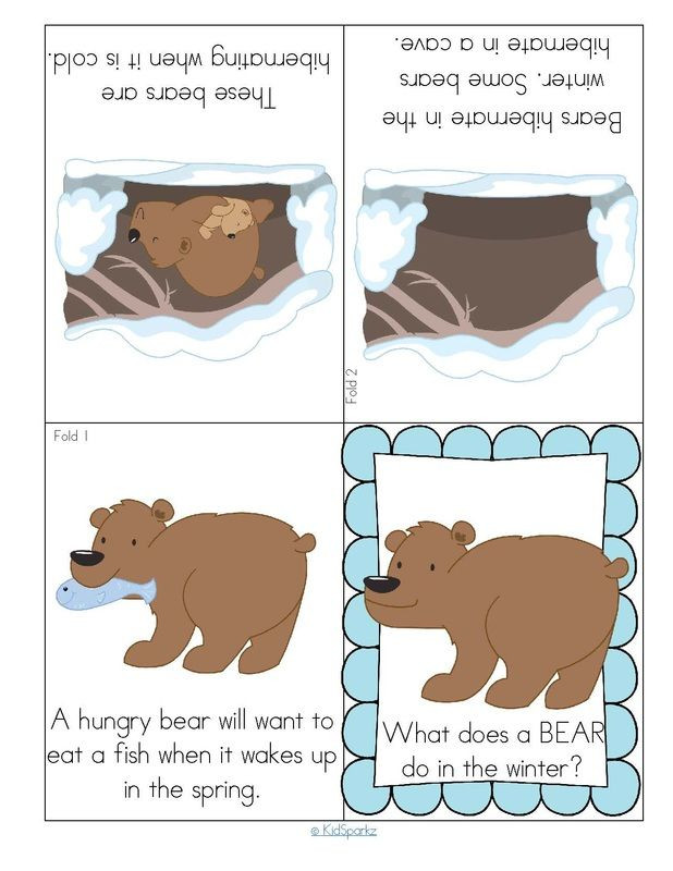 Hibernation Worksheets for Preschool Hibernating Bear Foldable Booklet
