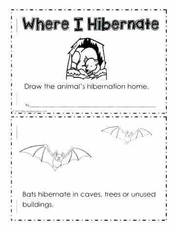 Hibernation Worksheets for Preschool Pin On Examples Printable Preschool Worksheets