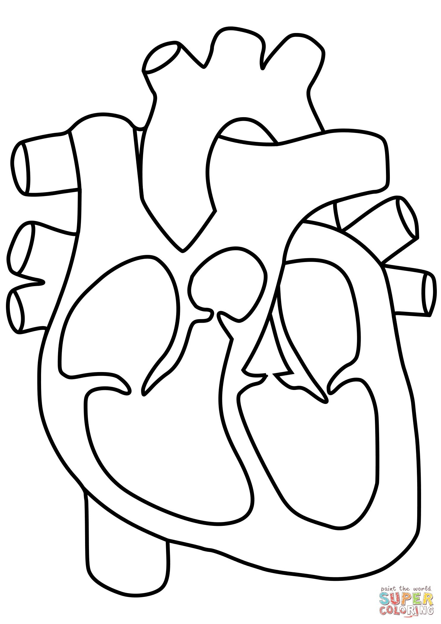 Human Heart Coloring Worksheet Human Heart Coloring Pages Human Heart Coloring Page Human