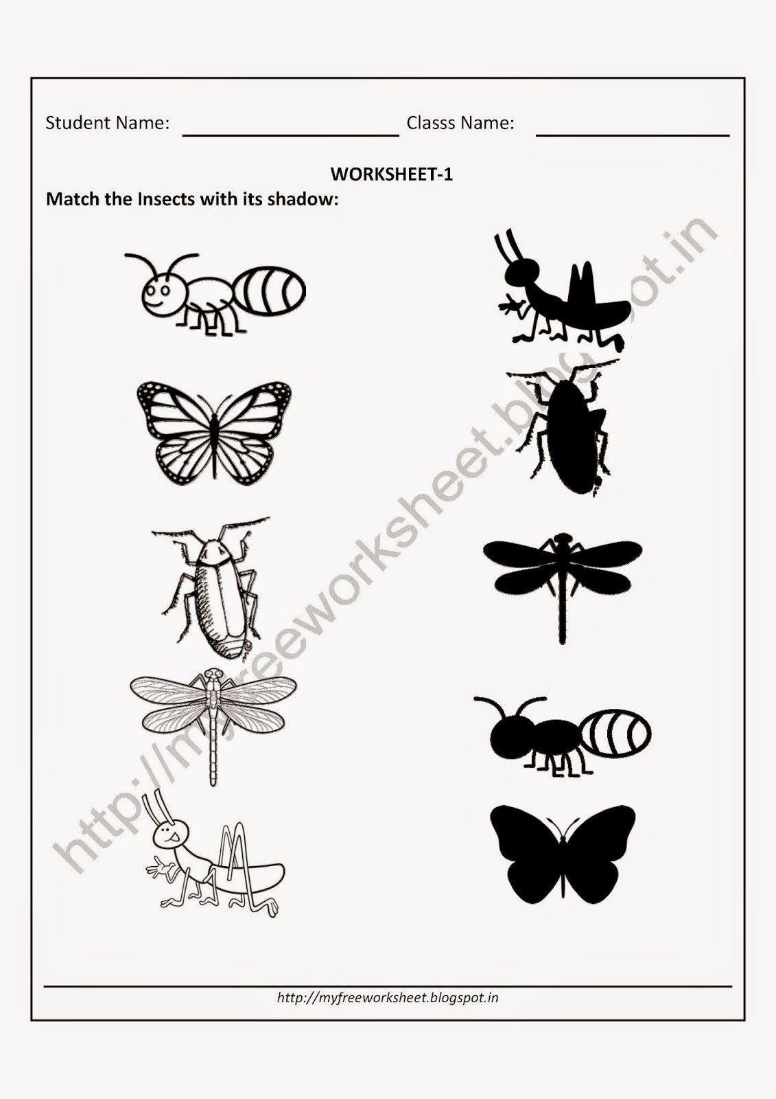 Insects Worksheets for Kindergarten My Free Worksheet Pdf Free Worksheet for Nursery
