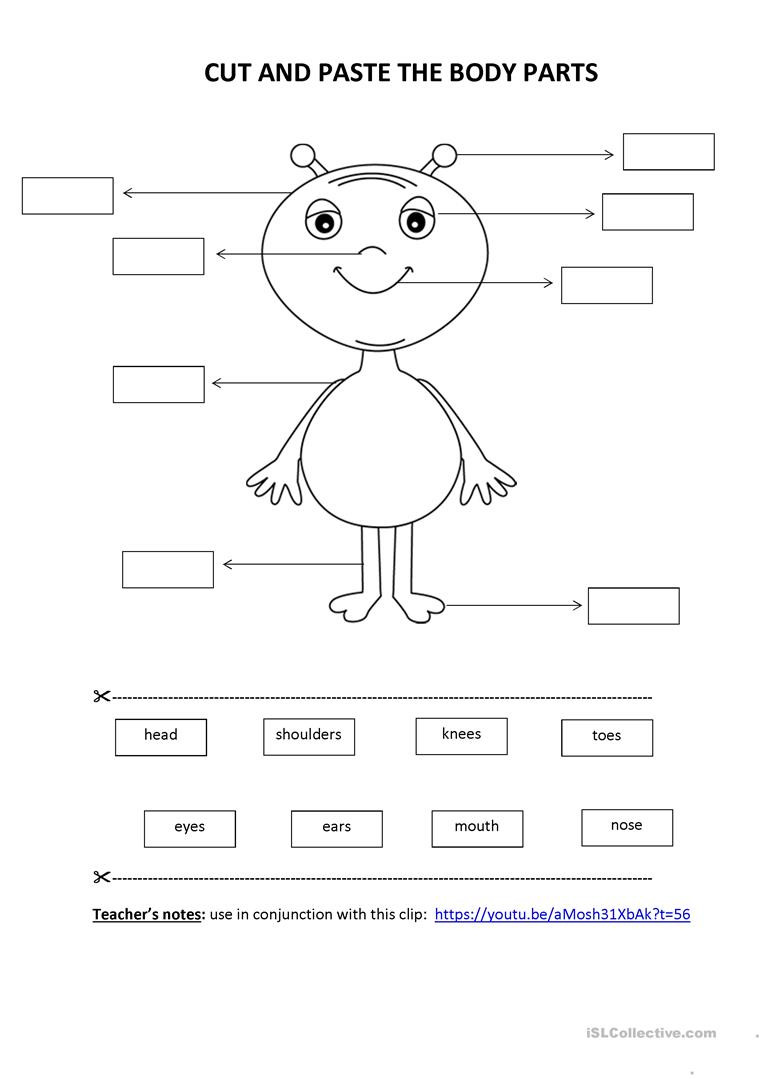 Kindergarten Cut and Paste Worksheets Cut & Paste Activity Body Parts English Esl Worksheets