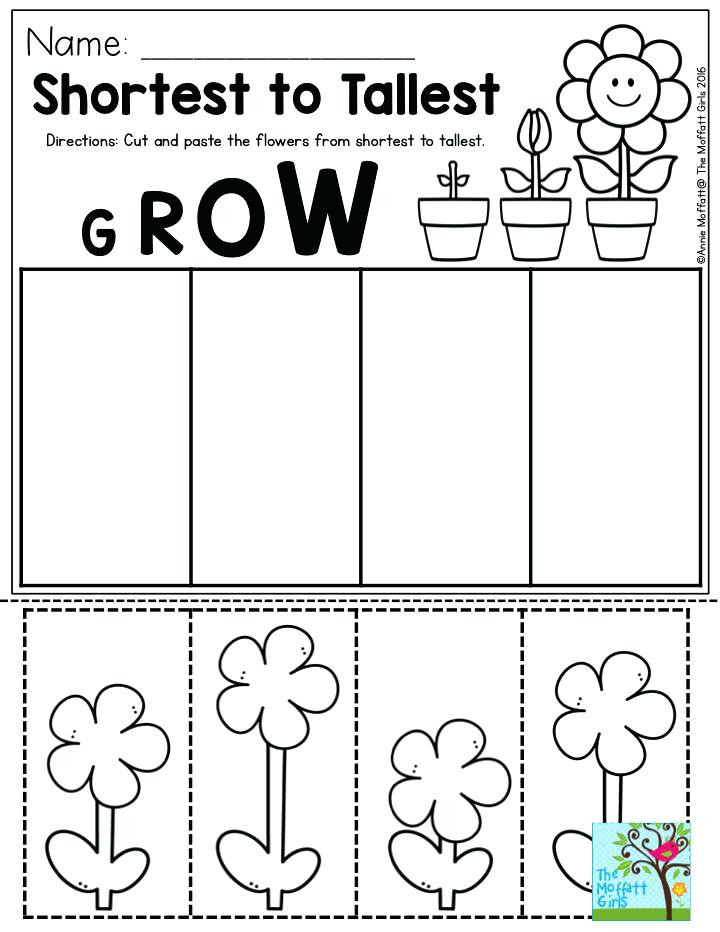 Kindergarten Cut and Paste Worksheets Preschool Cut and Paste Worksheets Cut and Paste Worksheets