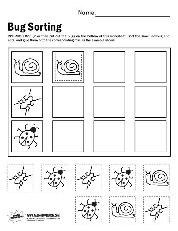 Kindergarten Math sorting Worksheets Bug sorting Worksheet