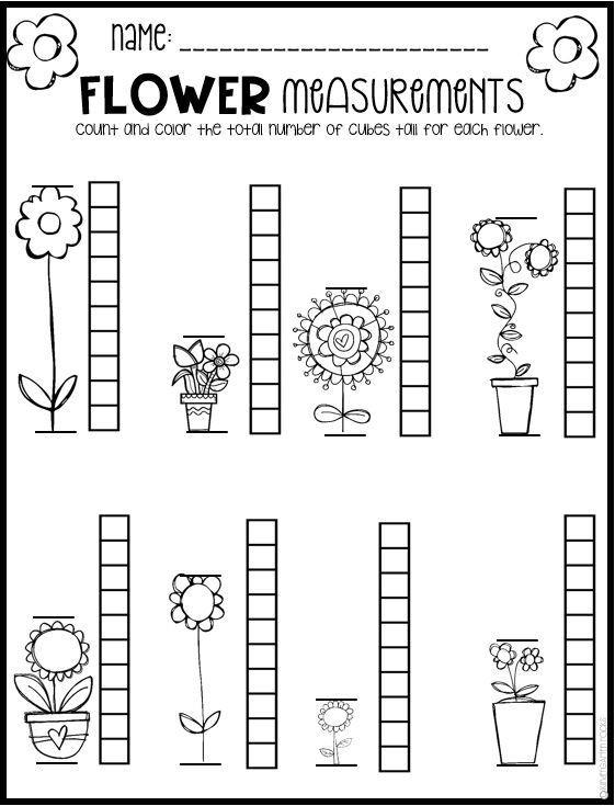 Kindergarten Measurement Worksheets Free Spring Math Worksheets for Kindergarten No Prep