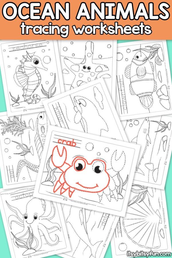 Kindergarten Ocean Worksheets Ocean Animals Tracing Worksheets Itsy Bitsy Fun