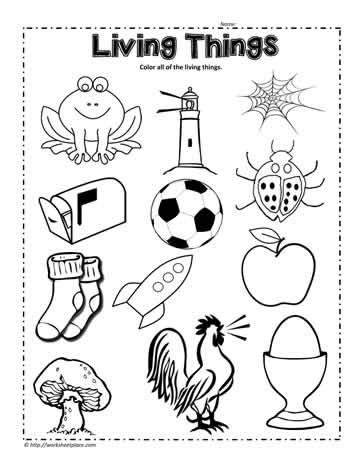 Kindergarten Science Worksheets Free Circle the Living Things Worksheet