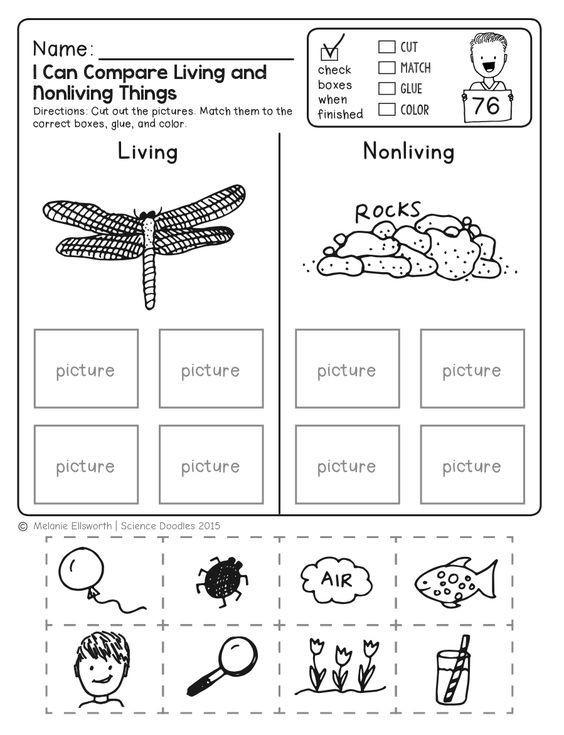 Kindergarten Science Worksheets Free Freebie No Prep Kindergarten Science Doodle Printables