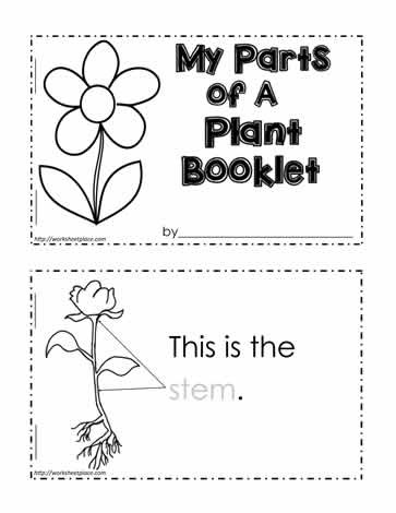 Kindergarten Science Worksheets Parts Of A Plant Worksheet Worksheets