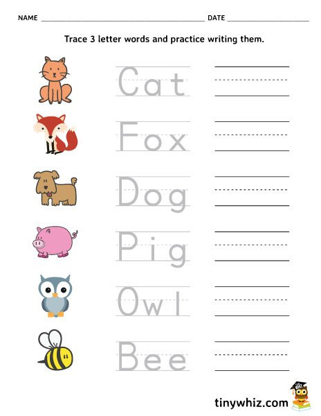 Kindergarten Three Letter Words Worksheets Free Printable Trace and Write 3 Letter Words