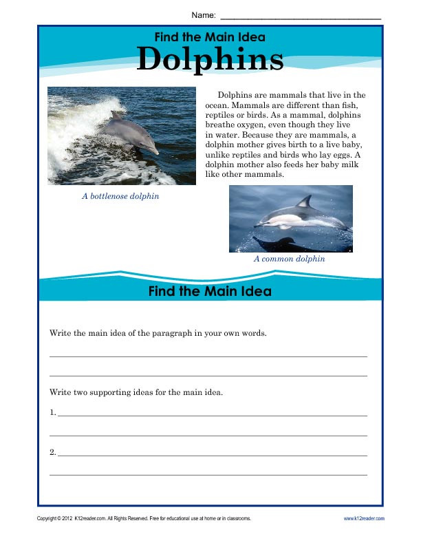 Main Idea 2nd Grade Worksheet 5th Grade Main Idea Worksheet About Dolphins
