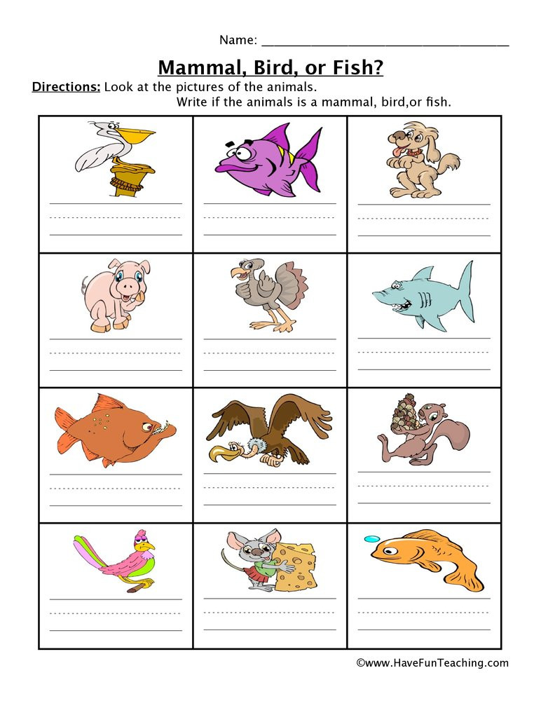 Mammal Worksheets First Grade Mammal Fish Bird Worksheet