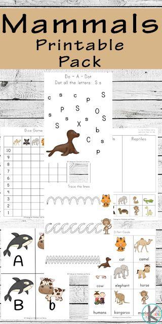 Mammal Worksheets for Kindergarten Free Mammals Printable Pack