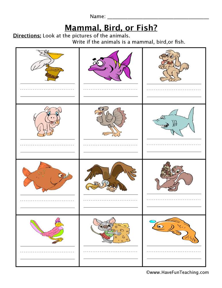 Mammal Worksheets for Kindergarten Mammal Fish Bird Worksheet