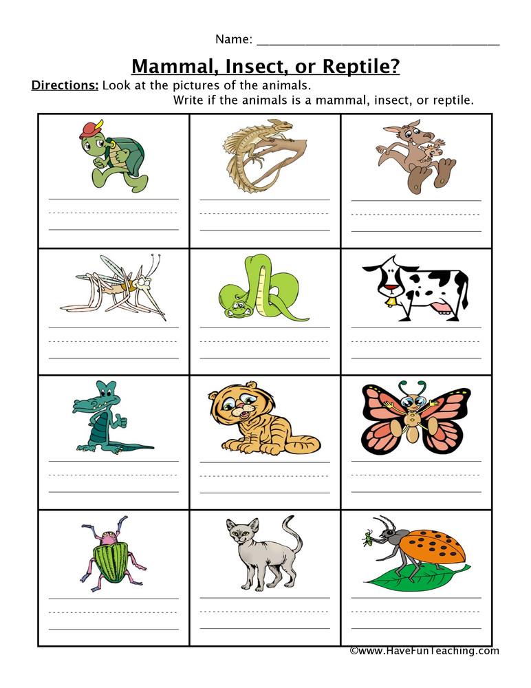 Mammal Worksheets for Kindergarten Mammal Insect Reptile Worksheet