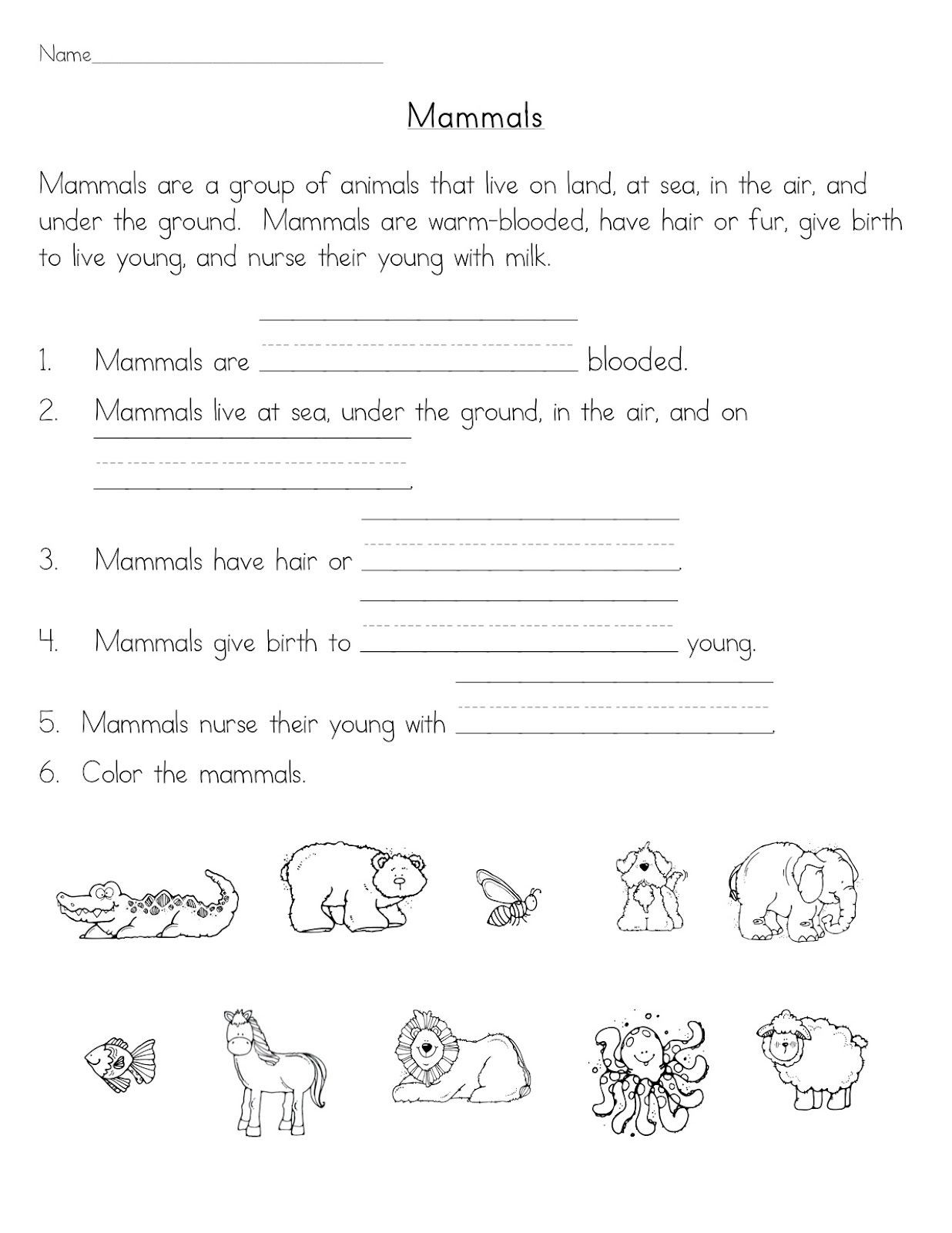 Mammal Worksheets for Kindergarten Mammals