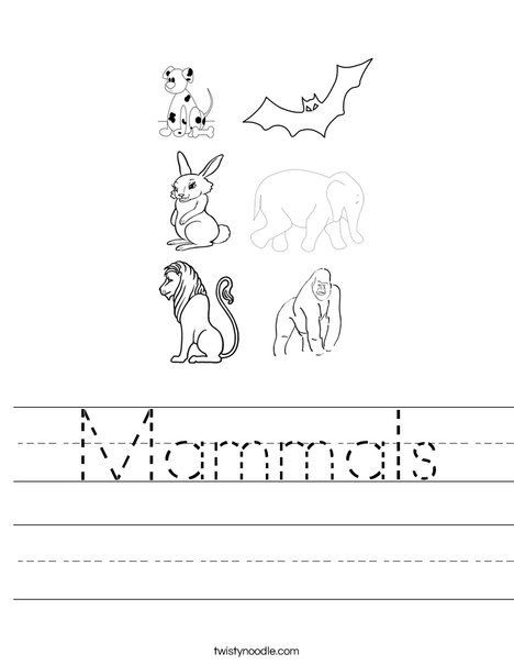Mammal Worksheets for Kindergarten Mammals Worksheet
