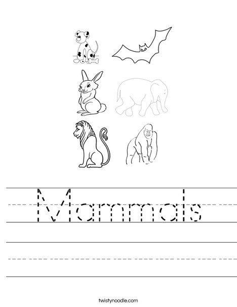 Mammal Worksheets for Kindergarten Mammals Worksheet