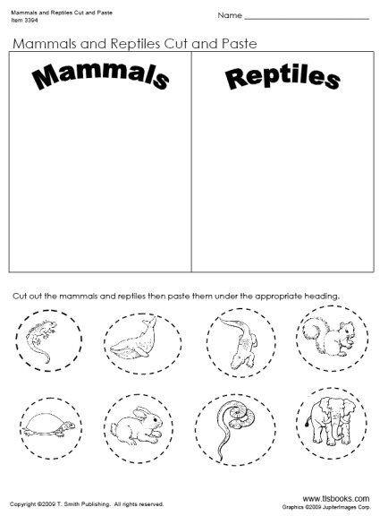Mammal Worksheets for Kindergarten Pin On sonlight P4 5