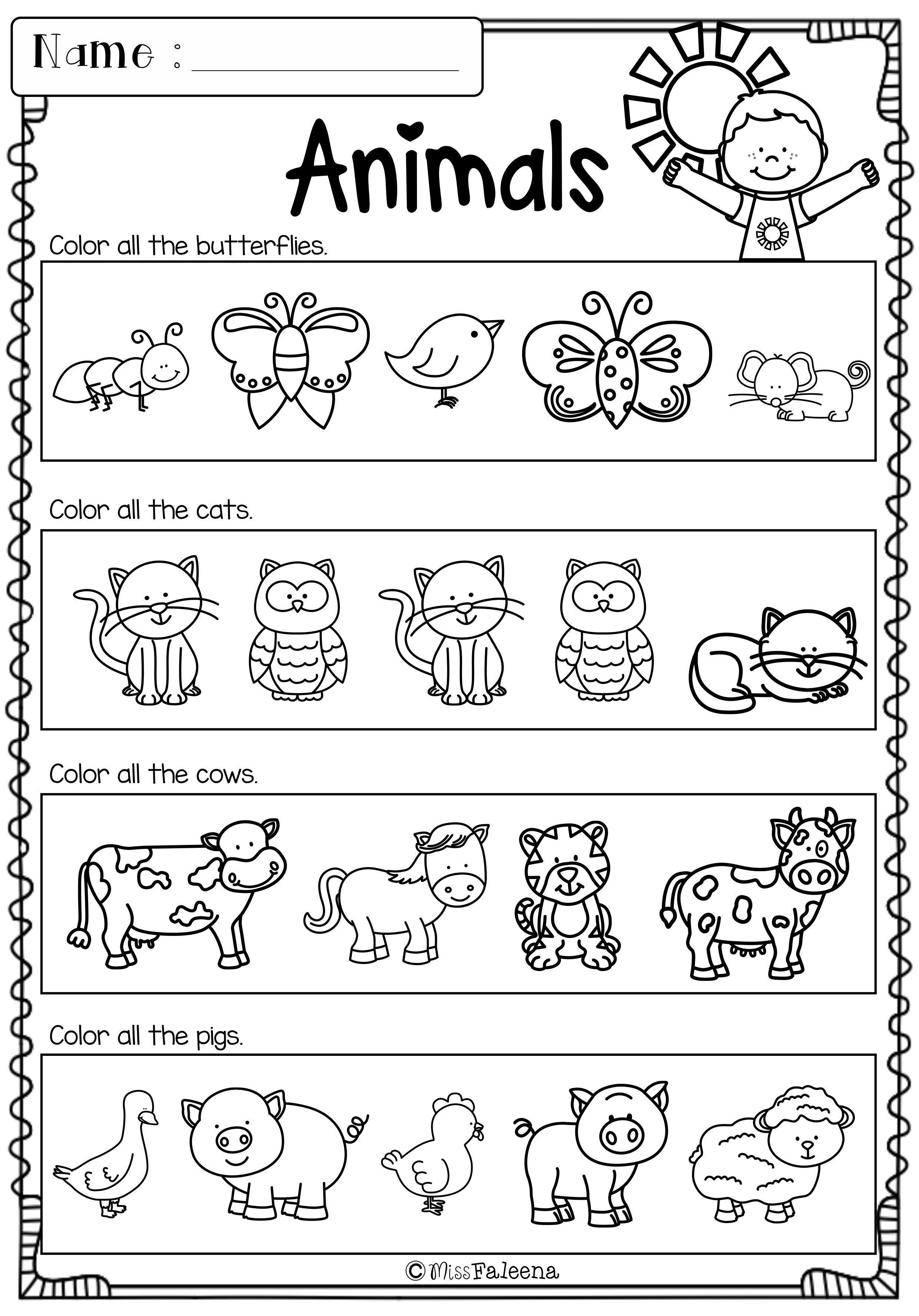 Morning Worksheets for Kindergarten Education Kindergarten Morning Work Bundle