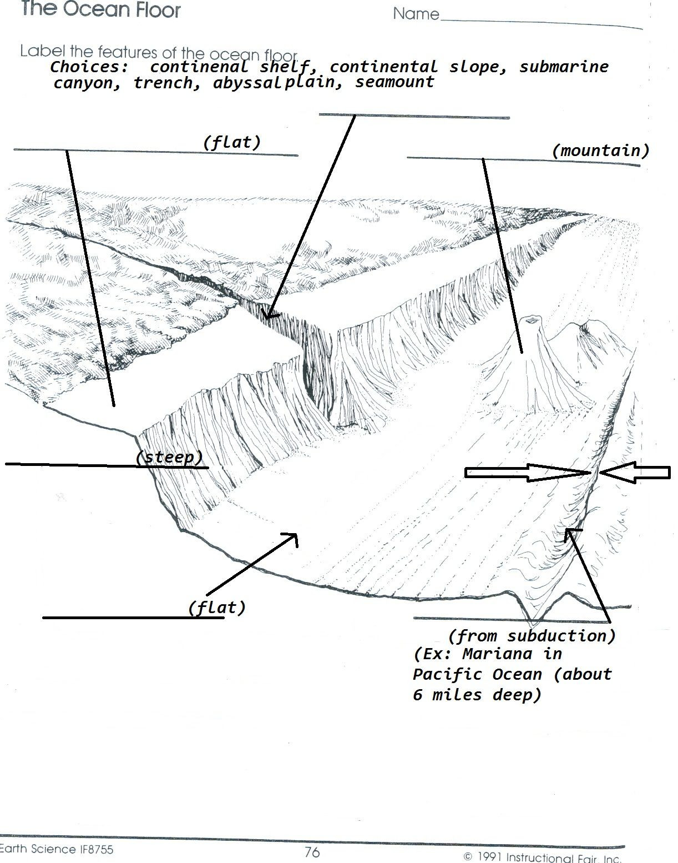 Ocean Floor Worksheets 5th Grade Label the Ocean Floor Worksheet Floor Ideas