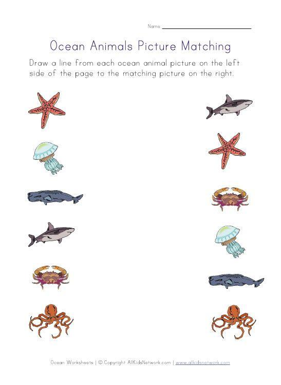 Ocean Worksheets for Preschool Printable Ocean Animals Worksheets for Kids