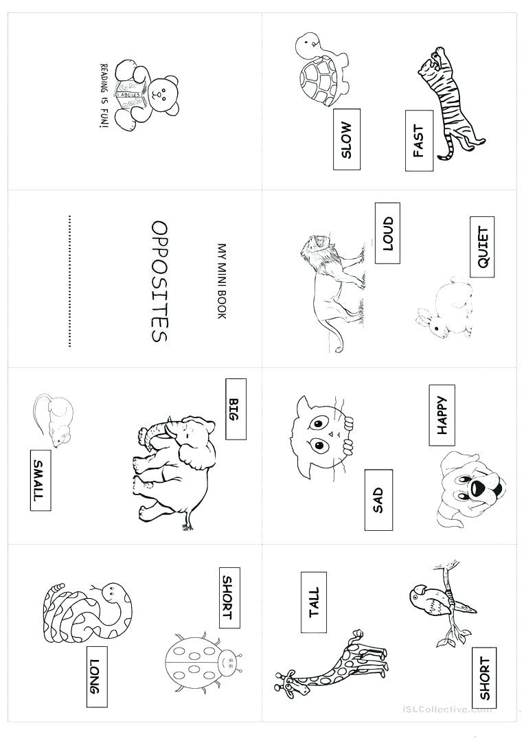 Opposites Preschool Worksheets Free Printable Opposites Worksheets for Preschoolers