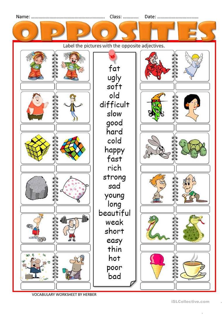 Opposites Worksheet Kindergarten Opposites Lessons Tes Teach