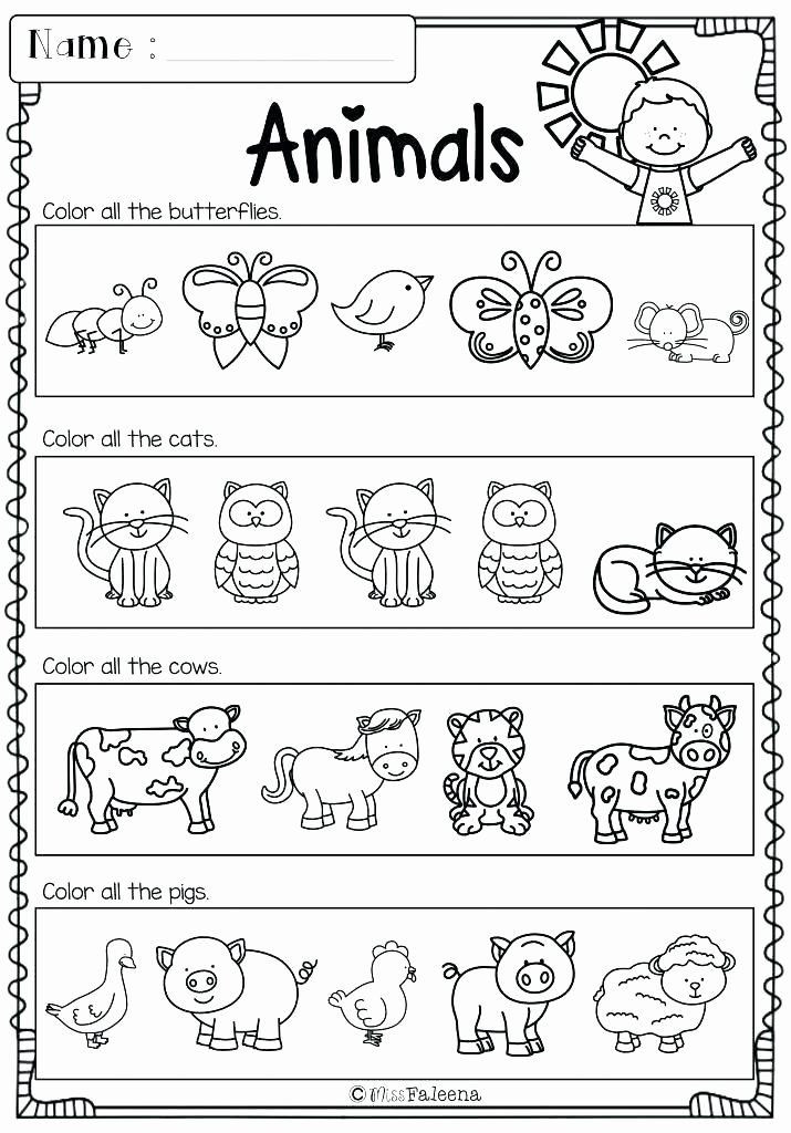 Positional Words Worksheets for Preschool Pin On Examples Printable Preschool Worksheets