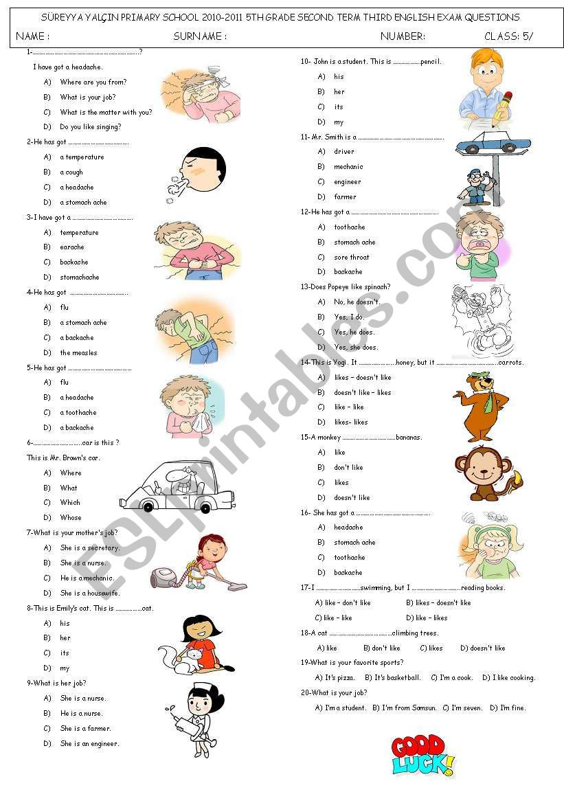 Possessive Pronoun Worksheets 5th Grade Health Possessive Pronouns Jobs and Hobbies Test Esl