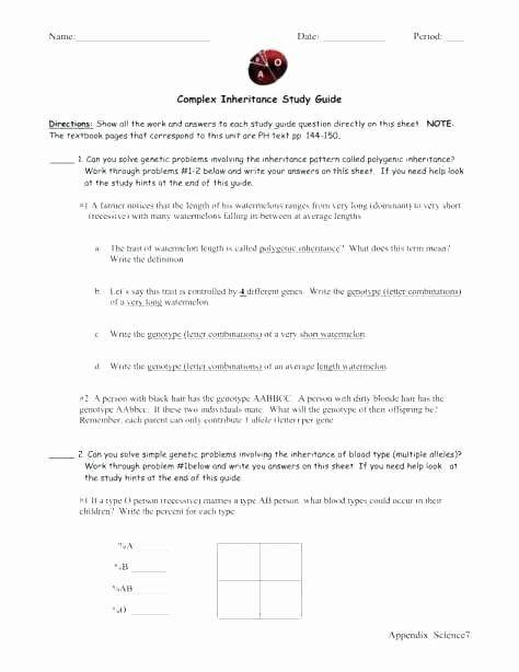 Printable Keyboarding Worksheets Printable Keyboarding Worksheets Awesome Typing Practice